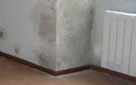 Rimedi naturali per eliminare umidità e muffa in casa